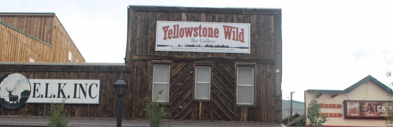 Yellowstone Wild The Gallery