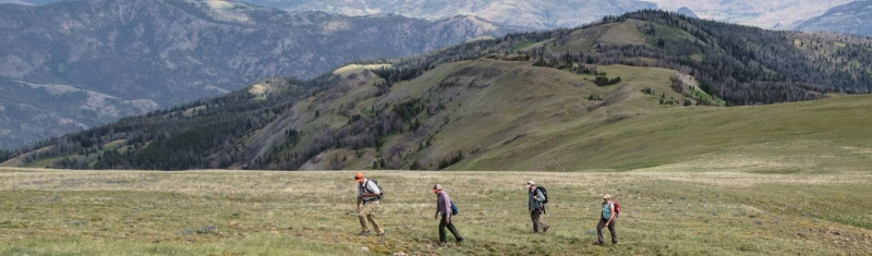 Five Spring Hikes Around Gardiner, Montana