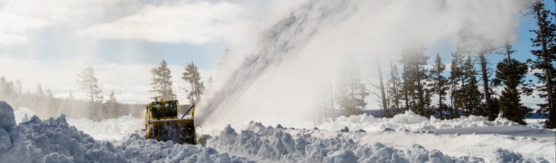 What's Happening at Yellowstone's North Entrance?