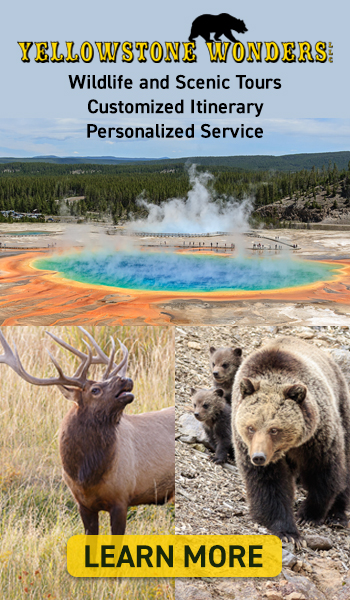 Yellowstone Wonders