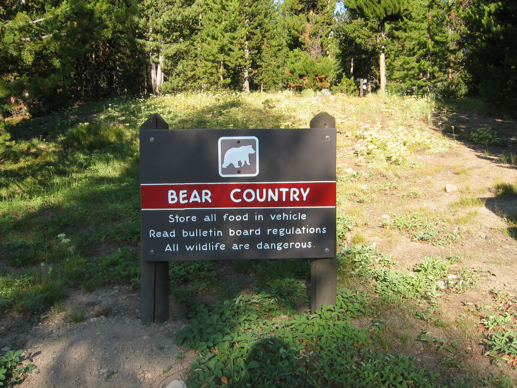 BearCountry NPS
