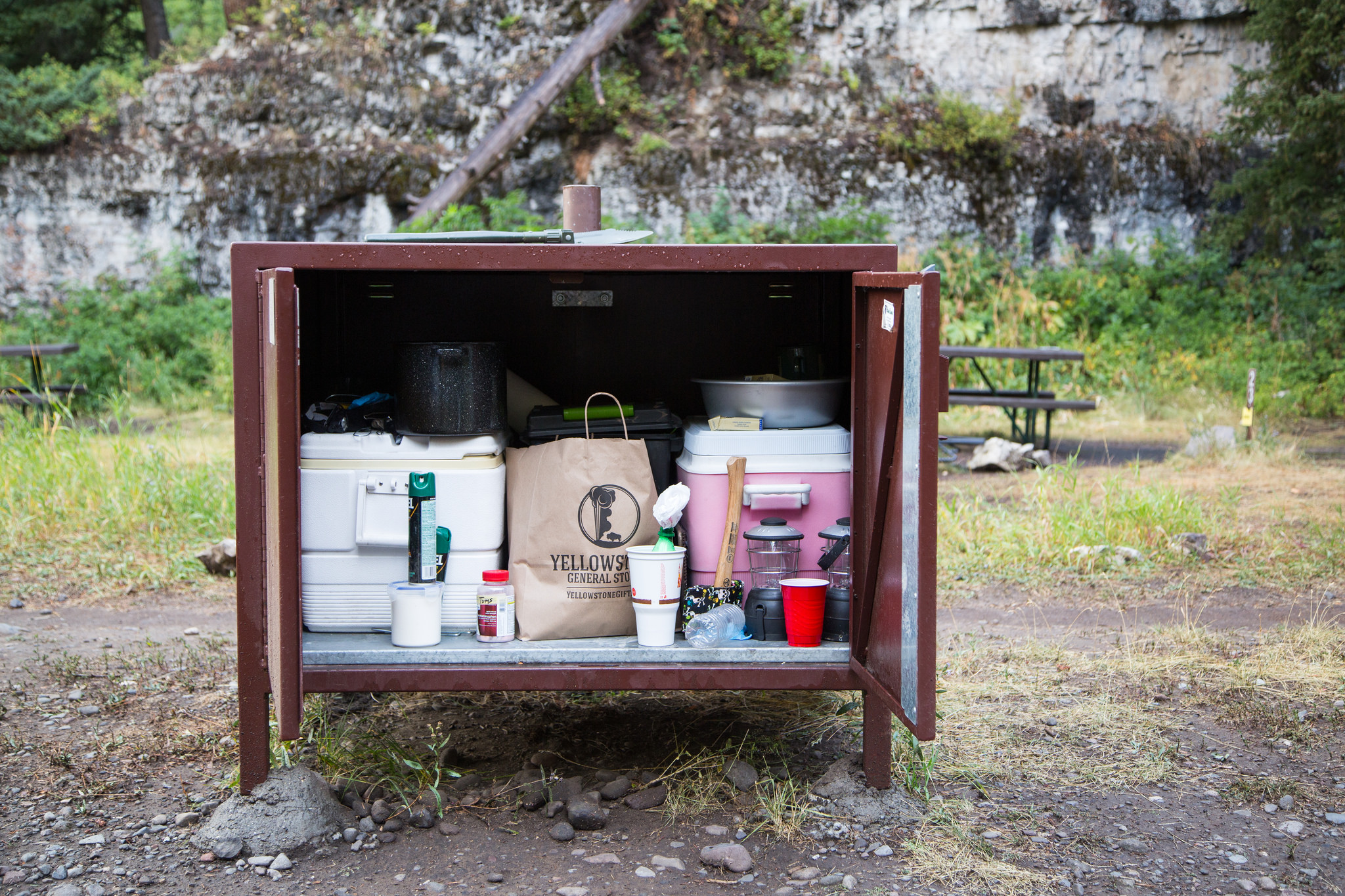 CampingBearBox NPS