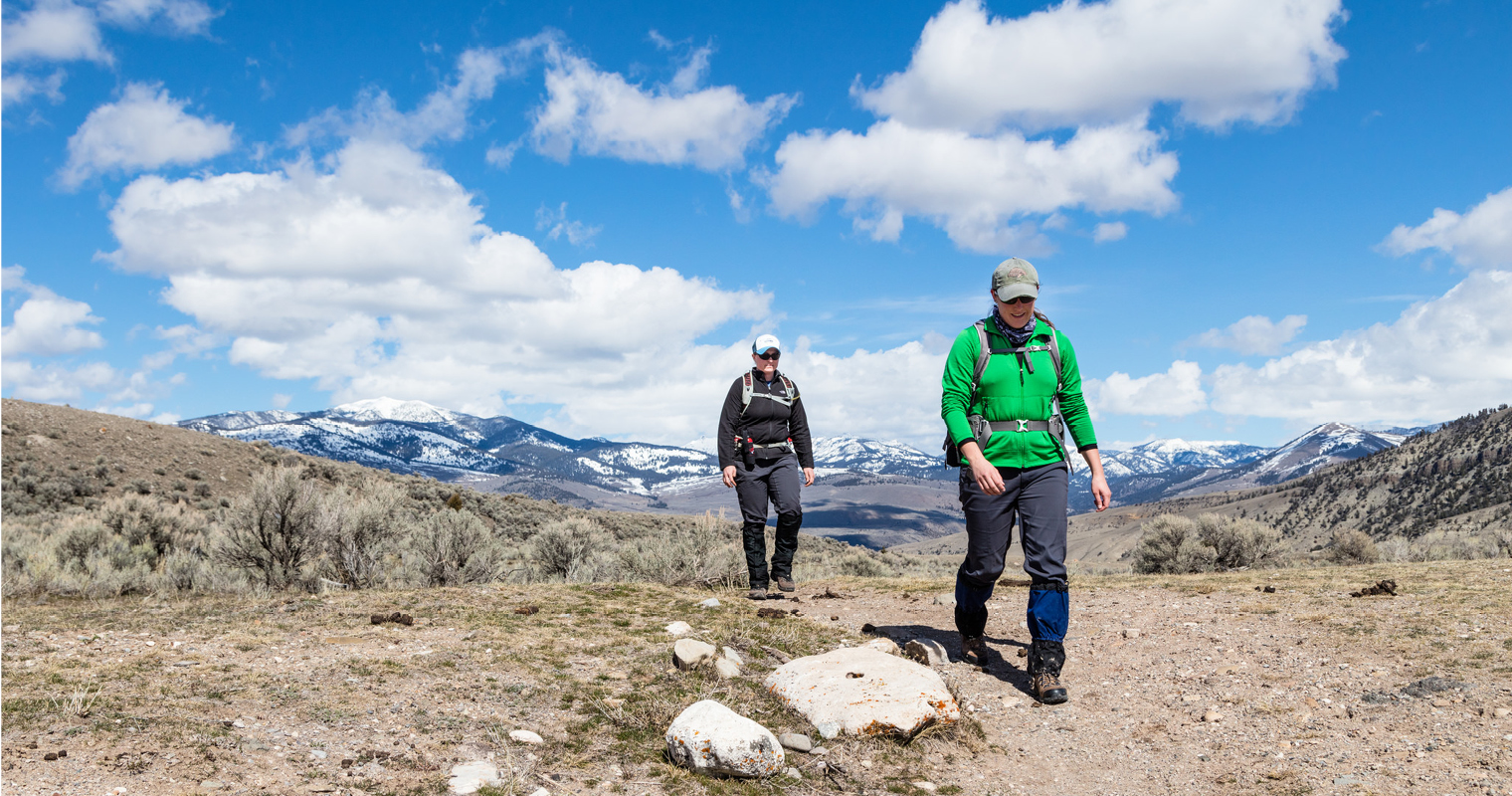 spring hiking near Mammoth Hot Springs