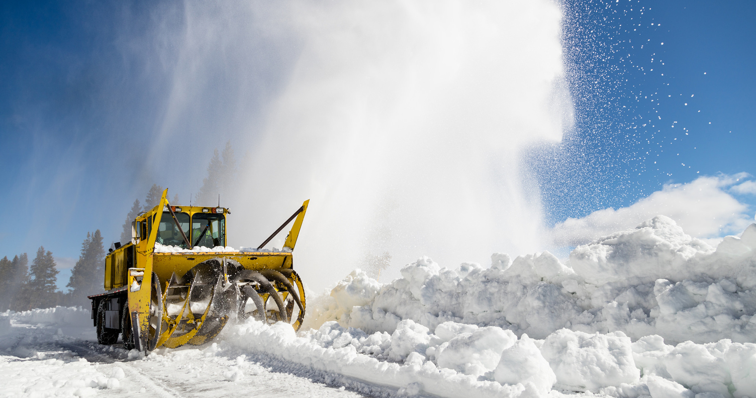 spring plowing in Yellowstone