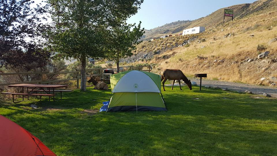 yellowstone rv campgrounds with electric