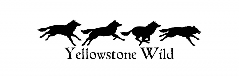 Yellowstone Wild, LLC