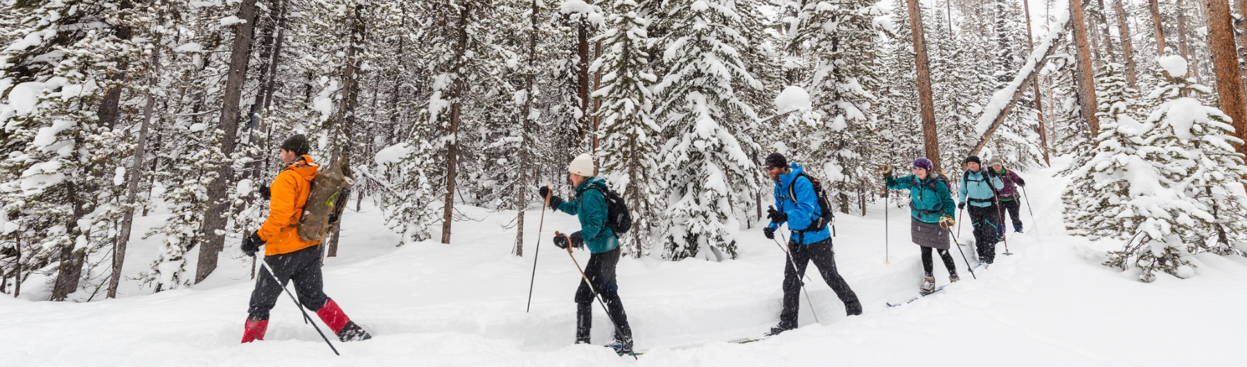 Favorite Cross-Country Ski Trails in Gardiner and Northern Yellowstone