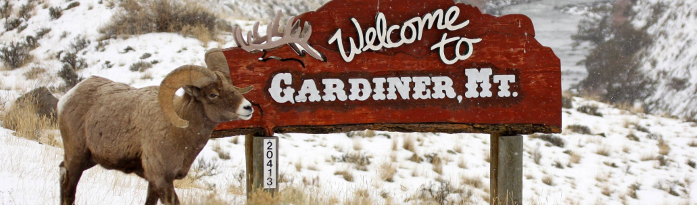 The Perfect Gardiner and Northern Yellowstone Three-Day Winter Itinerary